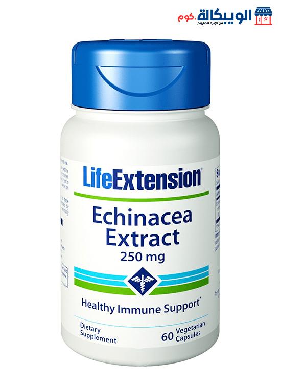 حبوب دواء مستخلص عشبة الاكنيشيا فى مصر | Echinacea Extract Capsules